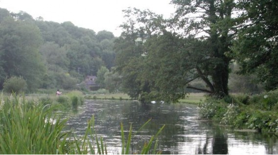 fly fishing on the river avon heale estate