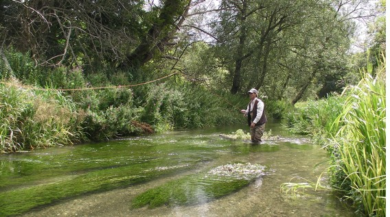 Fly fishing on Harry Plunket Greene's Bourne Rivulet