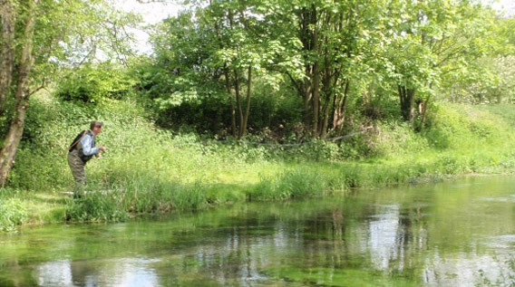 Upper Itchen fly fishing