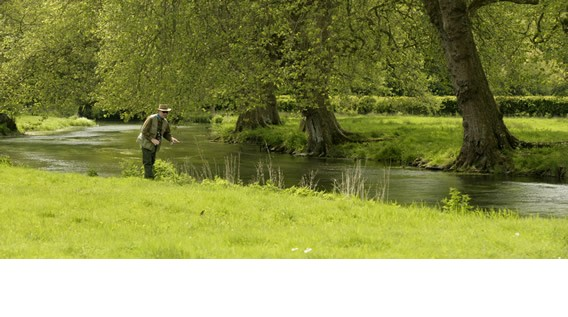 dry fly fishing river avon at heale